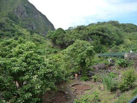 2009 HAWAII 288