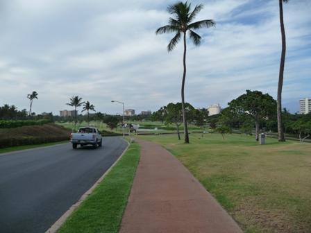 2009 HAWAII 245