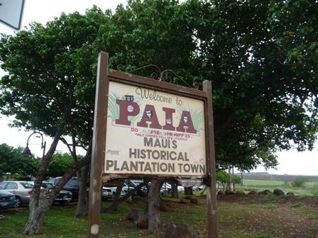 2009 HAWAII 319