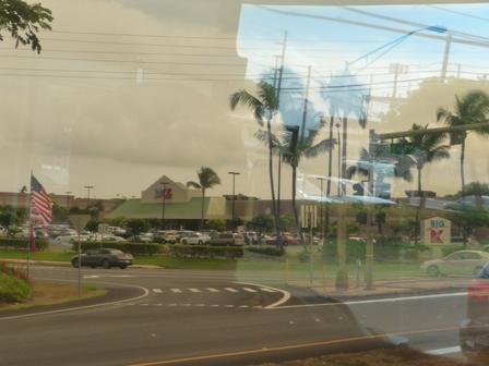 2009 HAWAII 317