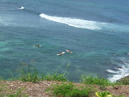 2009 HAWAII 348