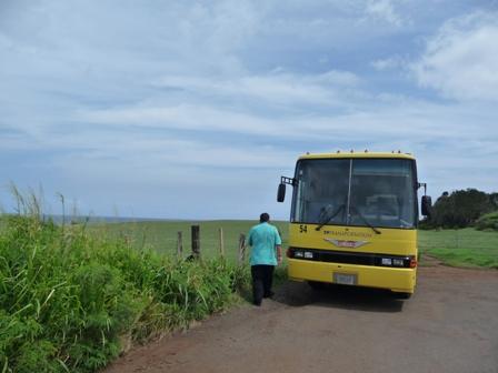 2009 HAWAII 353