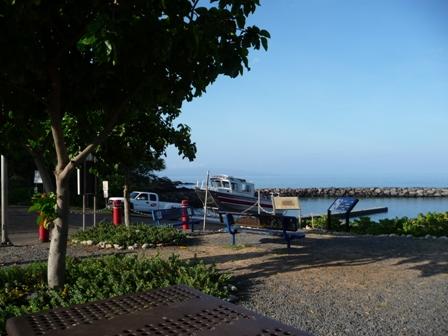2009 HAWAII 517