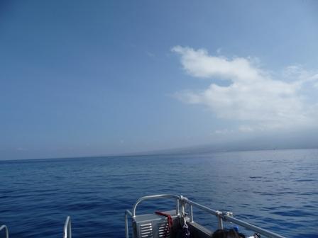 2009 HAWAII 536