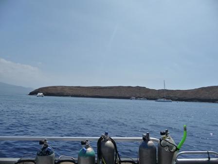 2009 HAWAII 559