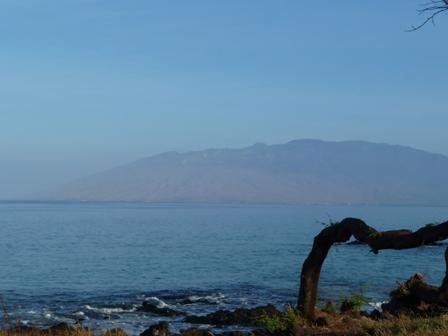 2009 HAWAII 511