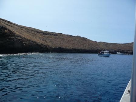 2009 HAWAII 548