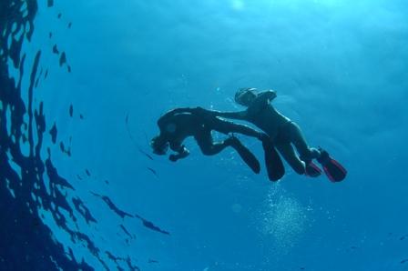 snorkel 005
