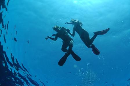 snorkel 004