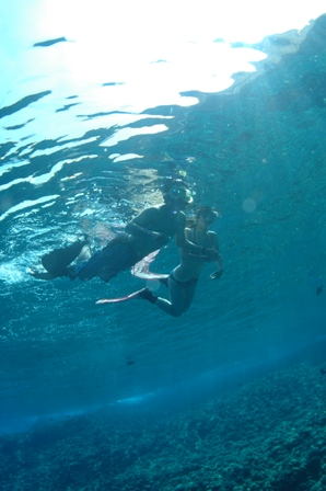snorkel 003