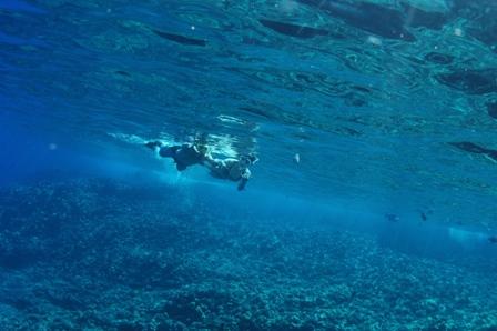 snorkel 002
