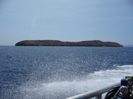 2009 HAWAII 572