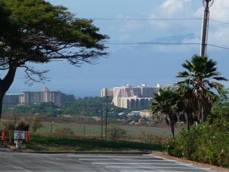 2009 HAWAII 660