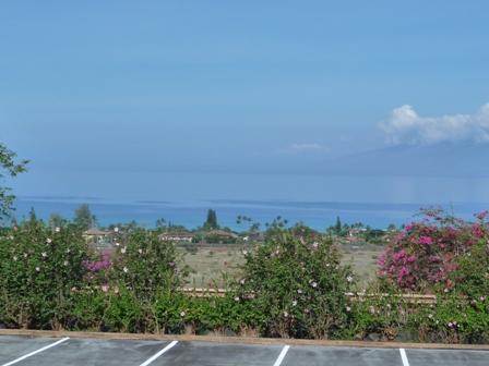 2009 HAWAII 659