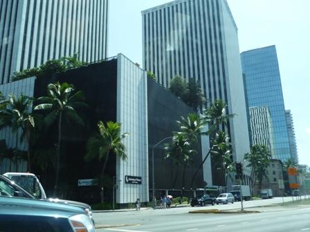 2009 HAWAII 694
