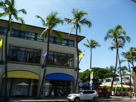 2009 HAWAII 713