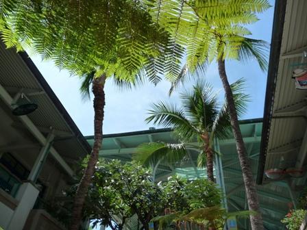2009 HAWAII 703