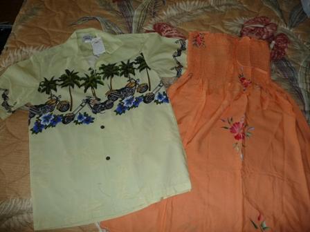 2009 HAWAII 741