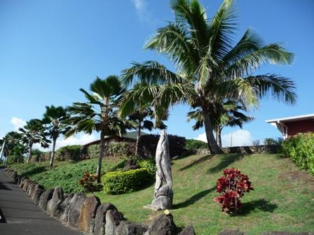 2009 HAWAII 832