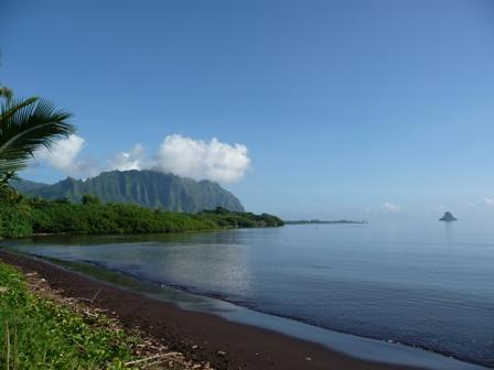 2009 HAWAII 828