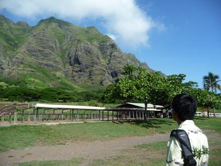 2009 HAWAII 834