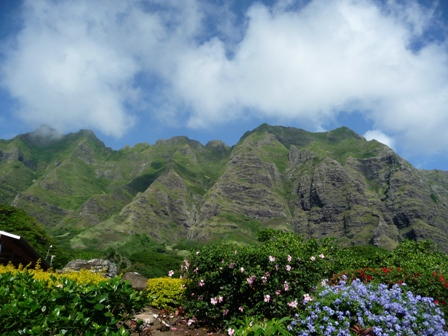 2009 HAWAII 833