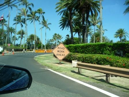 2009 HAWAII 875