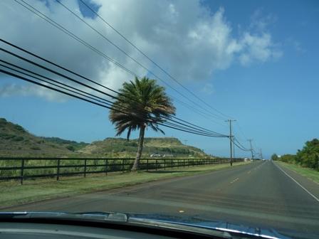 2009 HAWAII 873