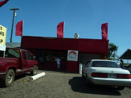 2009 HAWAII 867