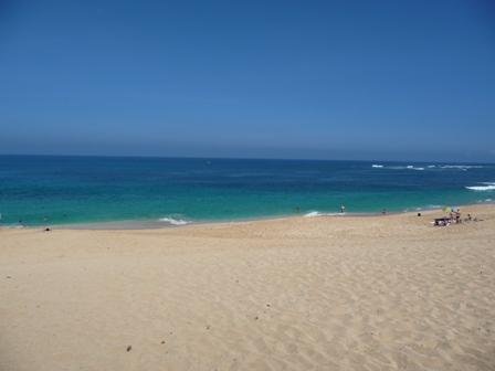 2009 HAWAII 884