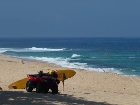 2009 HAWAII 879