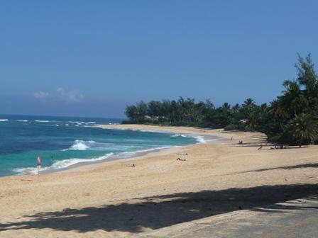 2009 HAWAII 877