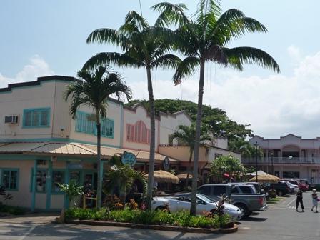 2009 HAWAII 927