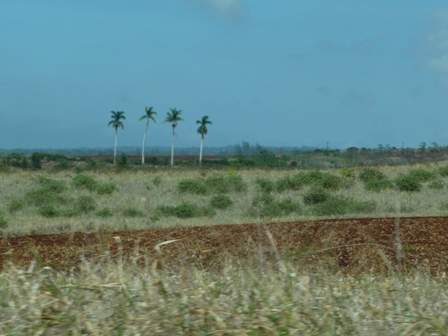 2009 HAWAII 938
