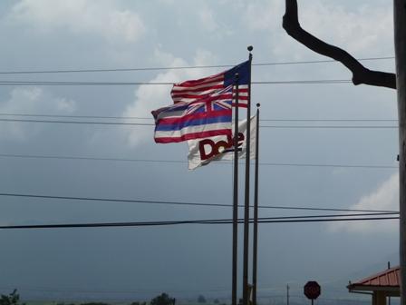 2009 HAWAII 942