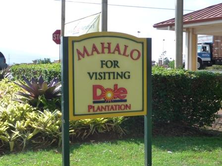 2009 HAWAII 966