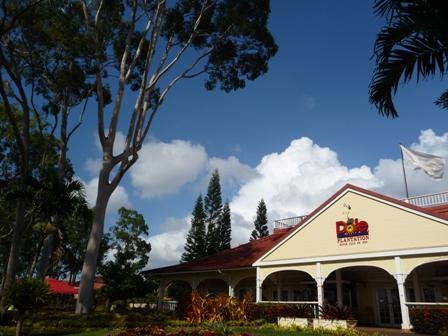 2009 HAWAII 964