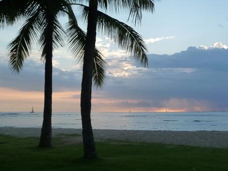 2009 HAWAII 981