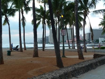 2009 HAWAII 978
