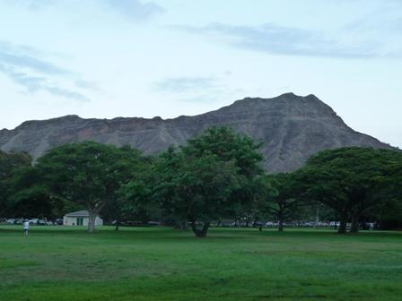 2009 HAWAII 986
