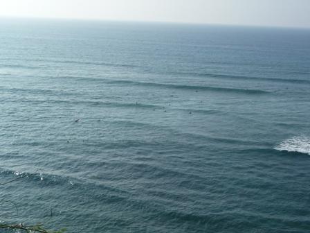 2009 HAWAII 1038