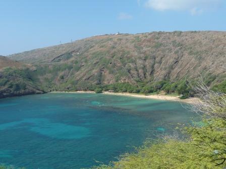 2009 HAWAII 1061