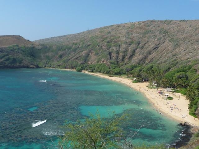 2009 HAWAII 1055