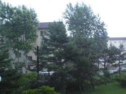 20070723a.jpg