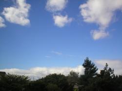 20070908b.jpg