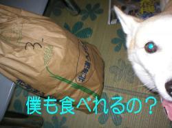 20070913e.jpg