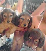 three-sister.jpg