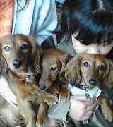 three-sister2.jpg