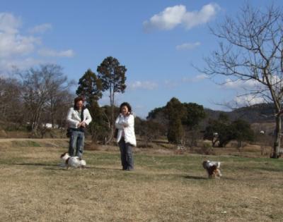 コピー ~ 2008_01030008