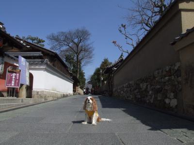 コピー - shigataikai.kyouto 144
